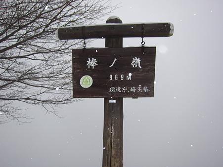 67841641[1].jpg